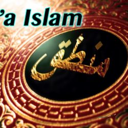 What is Shia Islam?
