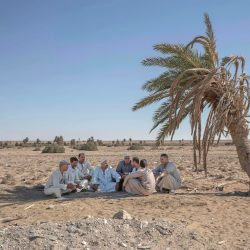 "55-year-old Egyptian farmer Makhluf Abu Kassem, center, sits with farmers under shade of a dried up palm tree surrounded by barren wasteland that was once fertile and green, in Second Village, Qouta town, Fayoum, Egypt, Wednesday, Aug. 5, 2020. Abu Kassem fears that a dam Ethiopia is building on the Blue Nile, the Nile's main tributary, could add to the severe water shortages already hitting his village if no deal is struck to ensure a continued flow of water. ""The dam means our death,"" he said. (Nariman El-Mofty/Associated Press)"